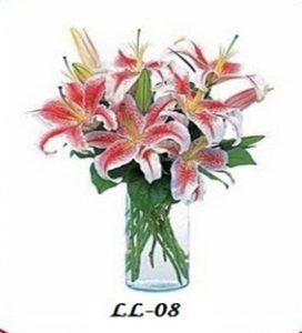Bunga Meja Lily