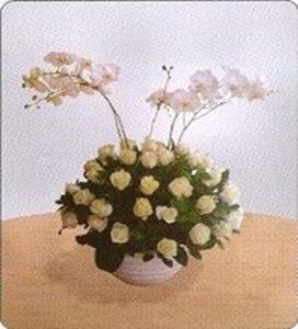 Bunga Mawar Elegance