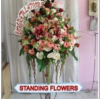 Beli Bunga di Toko Bunga Cisauk Tangerang